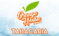 Orange House Brasil